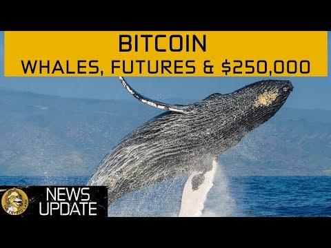 Bitcoin Price $250,000? Massive Ticketing Scam, BTC Futures & Poloniex - Cryptocurrency News