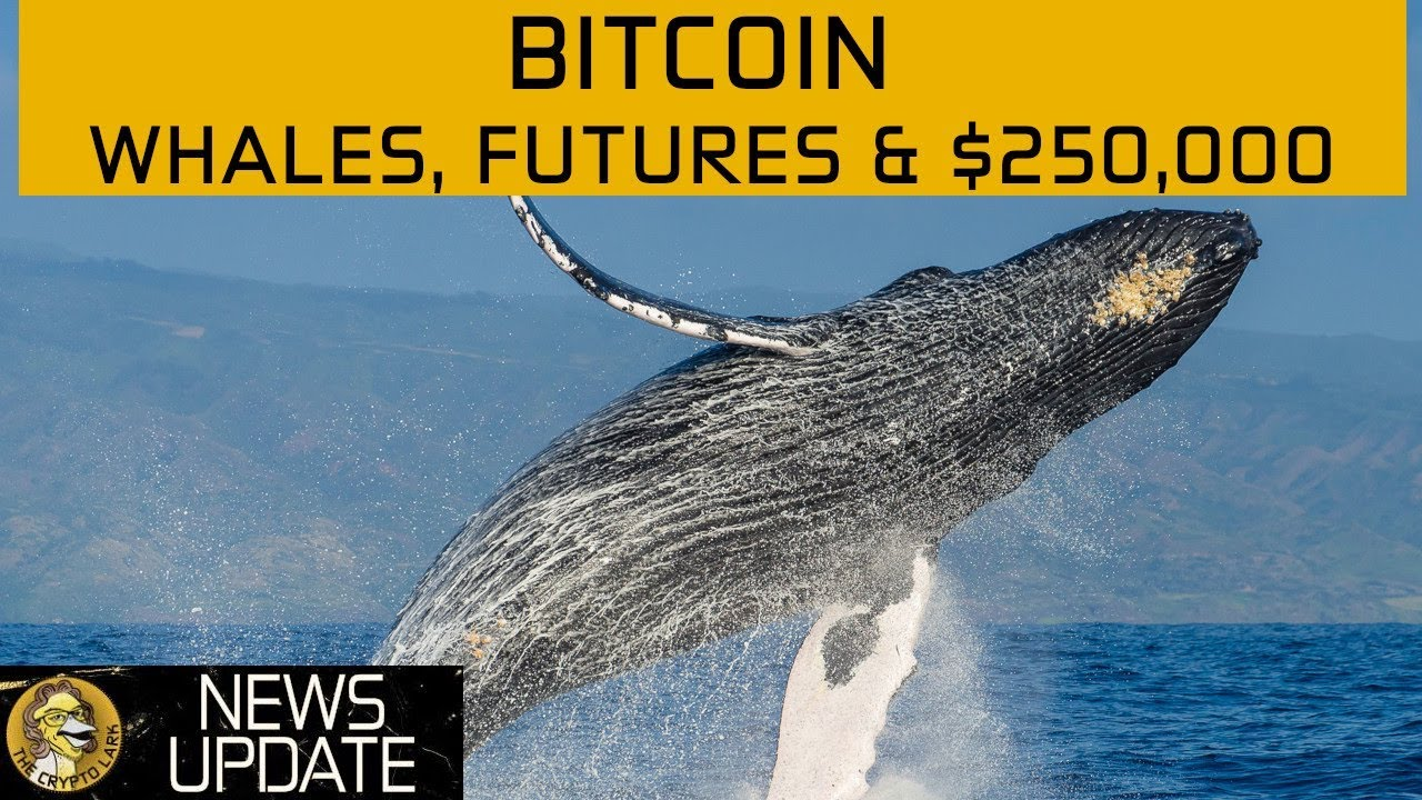 Bitcoin Price $250,000? Massive Ticketing Scam, BTC Futures & Poloniex - Cryptocurrency News