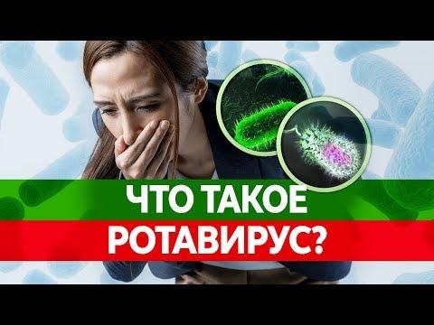 КИШЕЧНЫЙ ГРИПП ИЛИ РОТАВИРУС. Чем они опасны? Симптомы, лечение и последствия!