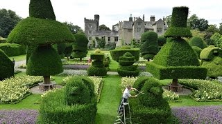 topiary - topiary pictures