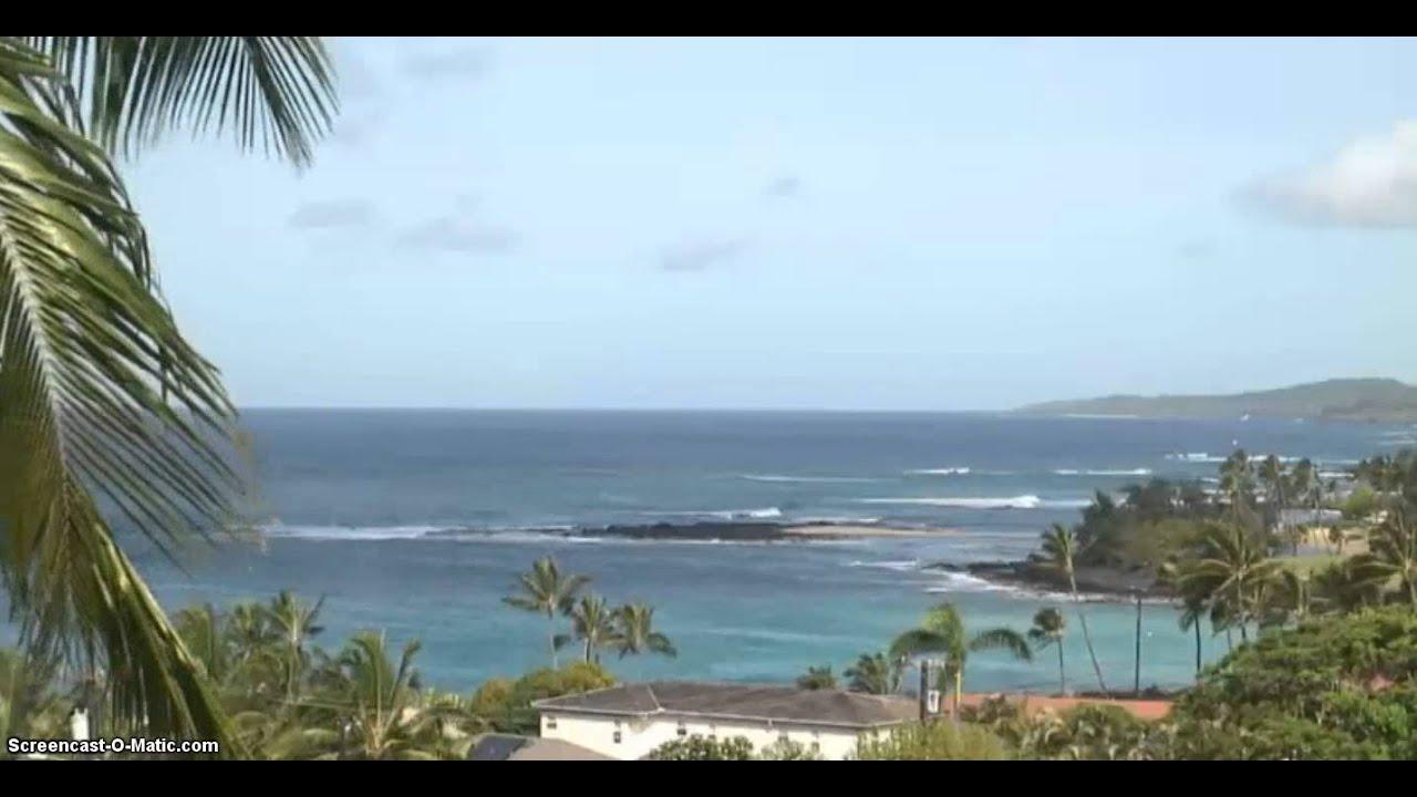 Aloha tube webcam