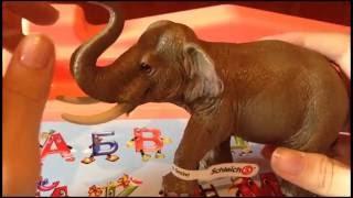 Обзор детской игрушки. Фигурка Азиатский слон Schleich 14653