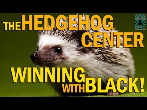 The Hedgehog Center: Winning with Black! - (EMPIRE CHESS)