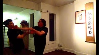 Moy Tung Kung Fu Hands Footwork Kicks & Takedowns