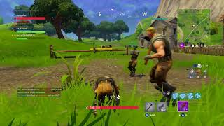 Fortnite battle royale entire game my team was trying to kill me
