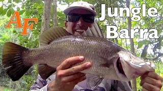00150 How to catch Barramundi many big fish from one snag Andysfishing Fishing Video
