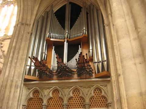 Cathedrale Saint-Etienne Organ