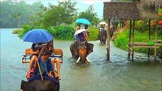 Таиланд 1 часть Река Квай Деревня слонов Катаемся на слонах Тайцы поют на русском языке