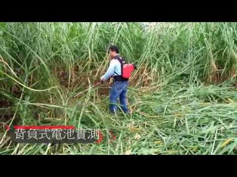 EBC 2401圓鋸木、牧草實測-電動背負式割草機