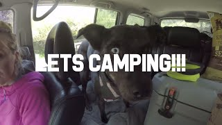 Let's Camping!! Ep. 1 G๐ose Lake, Red River New Mexico