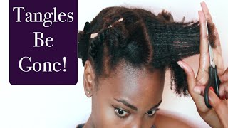 Getting Rid Of Those Tangles Girl! | Trimming My Split Ends | 4C Natural Hair | African Blogger