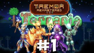 Terraria 1.3 EXPERT Tremor Mod #1 || Новые предметы!
