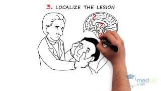 Neurology – Coma: By Michel Shamy M.D.