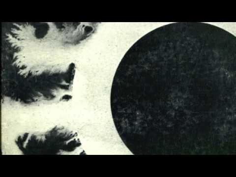 Bauhaus - Silent Hedges Lyrics | Musixmatch