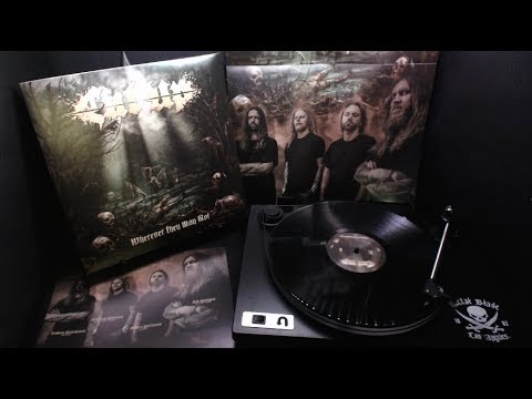 """Cut Up """"Wherever They May Rot"""" LP stream"""