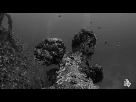 Diving Red Sea - The Salem Express Wreck 2017