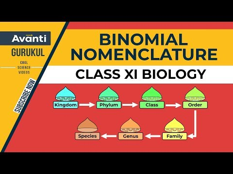 B1.1.2 Binomial Nomenclature (Hindi)