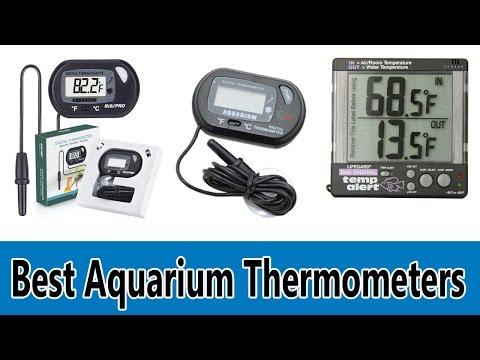 Top 5 Best Aquarium Thermometers Review 2020