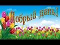 Физминутка приветствие Добрый день mp3