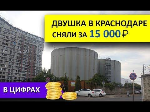 Сколько стоит снять квартиру в Краснодаре. Цифры.