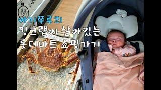 [쭈루의 하루] 쭈루의 롯데마트 장보러가기 (Newbo…