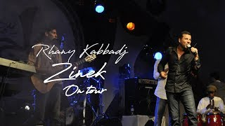zinek 2012