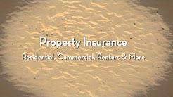 Best Price Car Insurance Quotes Palm Beach Gardens Florida
