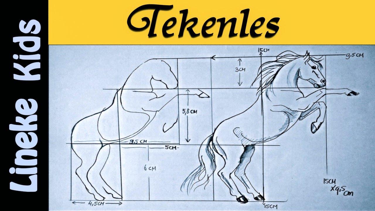 Hoe Teken Je Een Steigerend Paard Tekenles 4 Youtube