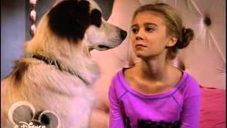 Собака точка ком   1 сезон, 22 5 серия