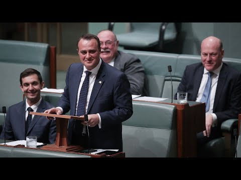 Australian Politician Proposes To Partner In Parliament