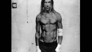 Watch Iggy Pop Gimme Danger video