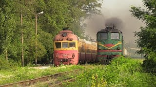 Две классики - дизель-поезд Д1 и тепловоз 2ТЭ10Л / Two classics - D1 DMU and 2TE10L