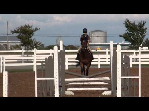 Leo Bounce and Gymnastics Grid lesson Riding Woody