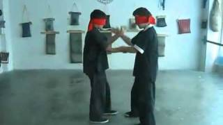 kids with excellent wing chun Chi Sao Closed Eyes.mp4