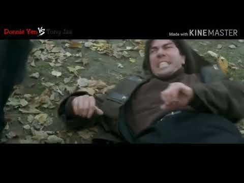 Donnie Yen Vs Tony Jaa Best Of Martial Arts Fight Scene