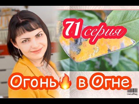 ЮВеЛиРНый ПРиГоВоР🔥71 ВыПуСК🔥ШуТи ПоКа МоЛоДой💥Ювелирные Украшения от Леди Самоцвет💎Серебро🎂925