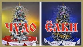 Купить Чудо Ёлку в Краснодаре(Новинка 2015-2016 Нового года! По новогодним ценам мы предлагаем вам Чудо-Ёлки и Чудо-Фонари с быстрой доставко..., 2015-12-21T20:56:10.000Z)