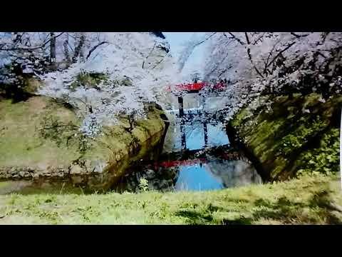 歌遊び 足羽川雨情  真木由布子 カバー 18.4.4.発売。 ごめんねめちゃくちゃで。