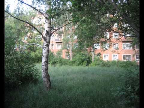 Карабаново-город над Серой-рекой