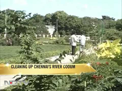 Will the Cooum river be Chennai's Thames?