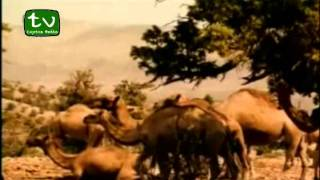 Veysel Karani [cijeli Film sa prijevodom...
