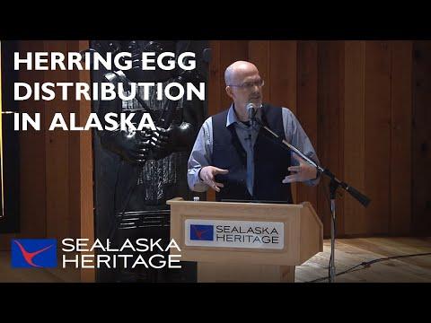 Herring Egg Distribution in Alaska
