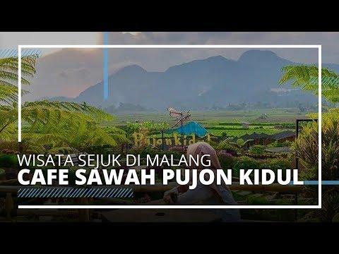 video-travel-|-spot-instagramable-di-cafe-sawah-pujon-kidul,-tempat-wisata-saat-liburan-ke-malang