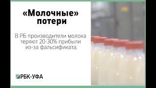 В РБ производители молока теряют 20-30% прибыли из-за фальсификата.