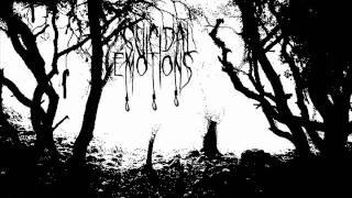 Suicidal Emotions - Depressive Silence