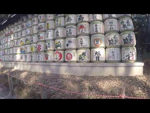 A Walk Through Meiji Shrine, 2/27/2017