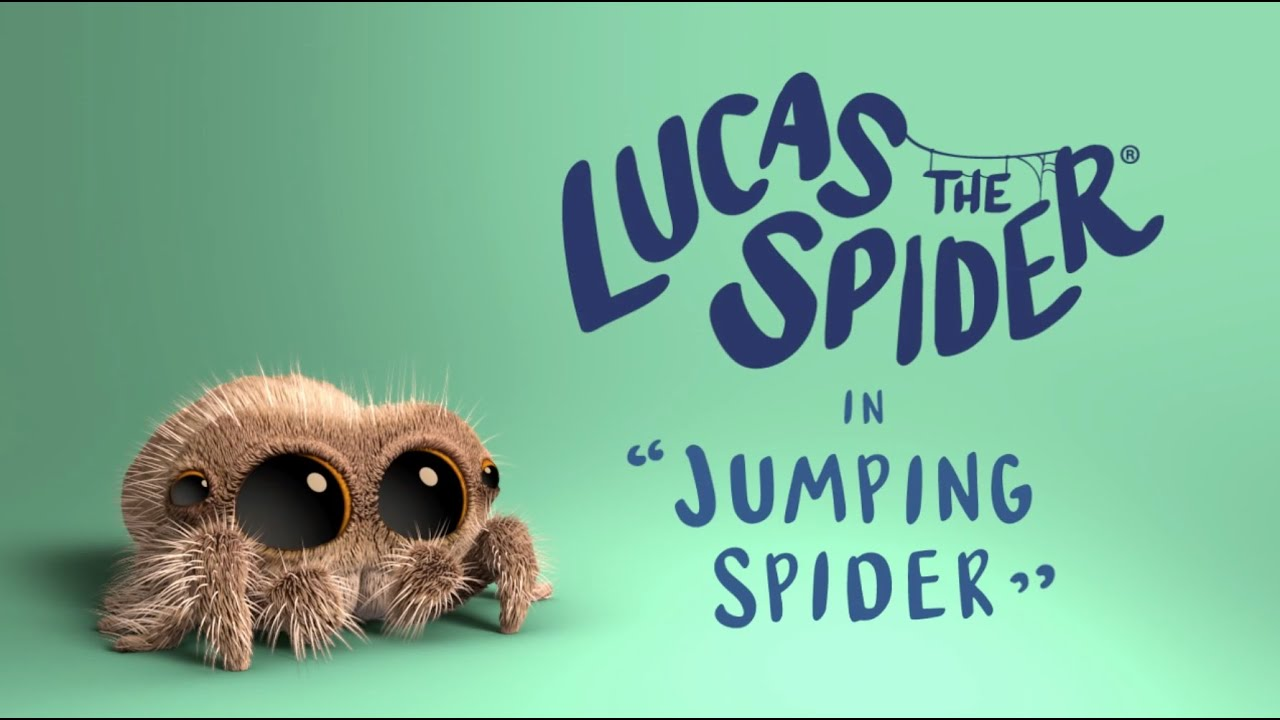 Download Lucas the Spider - Jumping Spider - Short