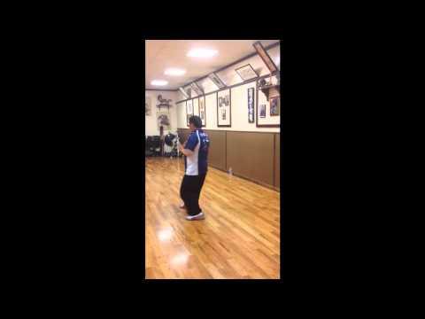Master Liu Chang I Feeding Crane Angle Fist Kata