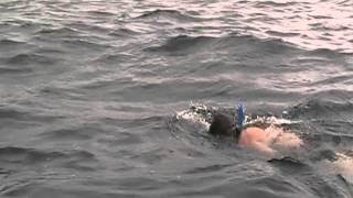 Swimming the Straits of Mackinac for the 4th time-WildWomanOutdoor.com