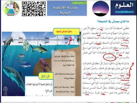 العلوم الدرس الثاني مقارنة الانظمة البيئية ما االذي يعيش في المحيط Youtube